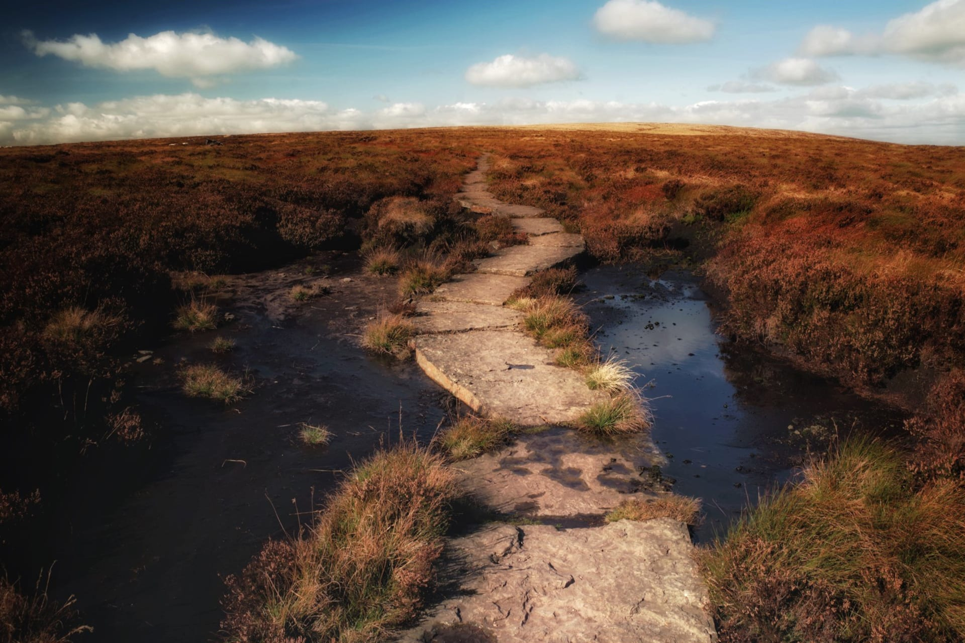 Horse trail in the Brecon Beacons
